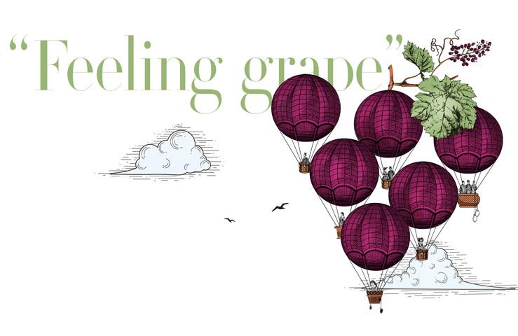 Baghera/wines feeling grape vente en ligne