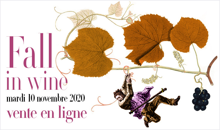 """fall in wine"" — vente en ligne 